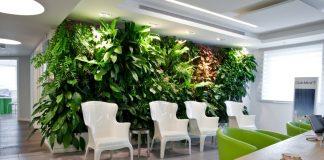 קיר שהוא כולו חגיגה לעיניים – קירות ירוקים לעיצוב פנים משגע